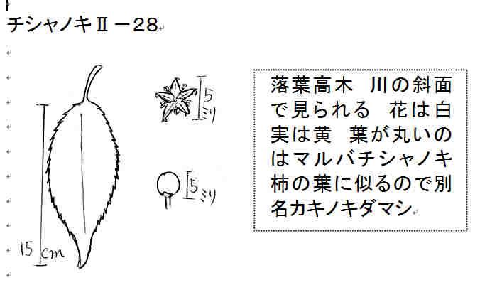 f:id:chuumeikun:20161211020305j:plain