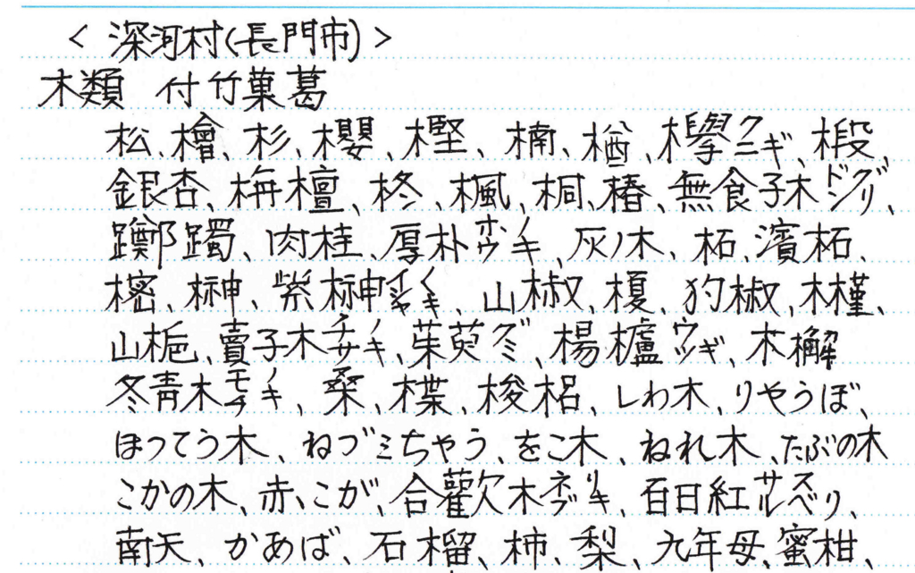 f:id:chuumeikun:20161214052652j:plain