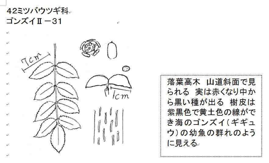 f:id:chuumeikun:20161217030157j:plain