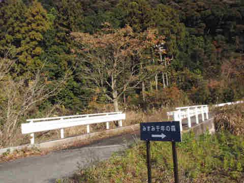 f:id:chuumeikun:20161219084557j:plain