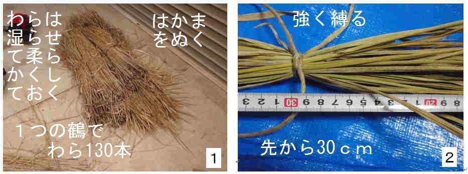 f:id:chuumeikun:20161221082013j:plain