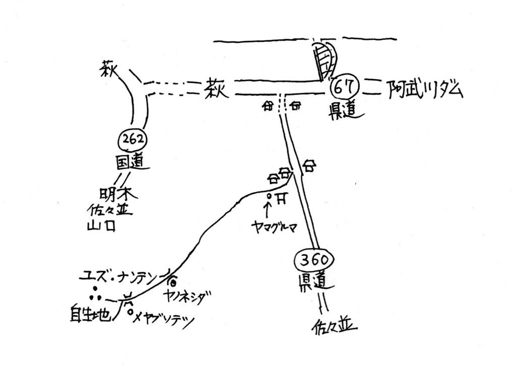 f:id:chuumeikun:20170131015156j:plain