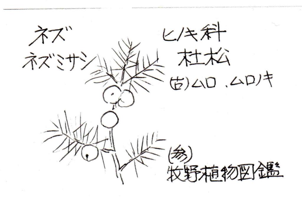 f:id:chuumeikun:20170205194245j:plain