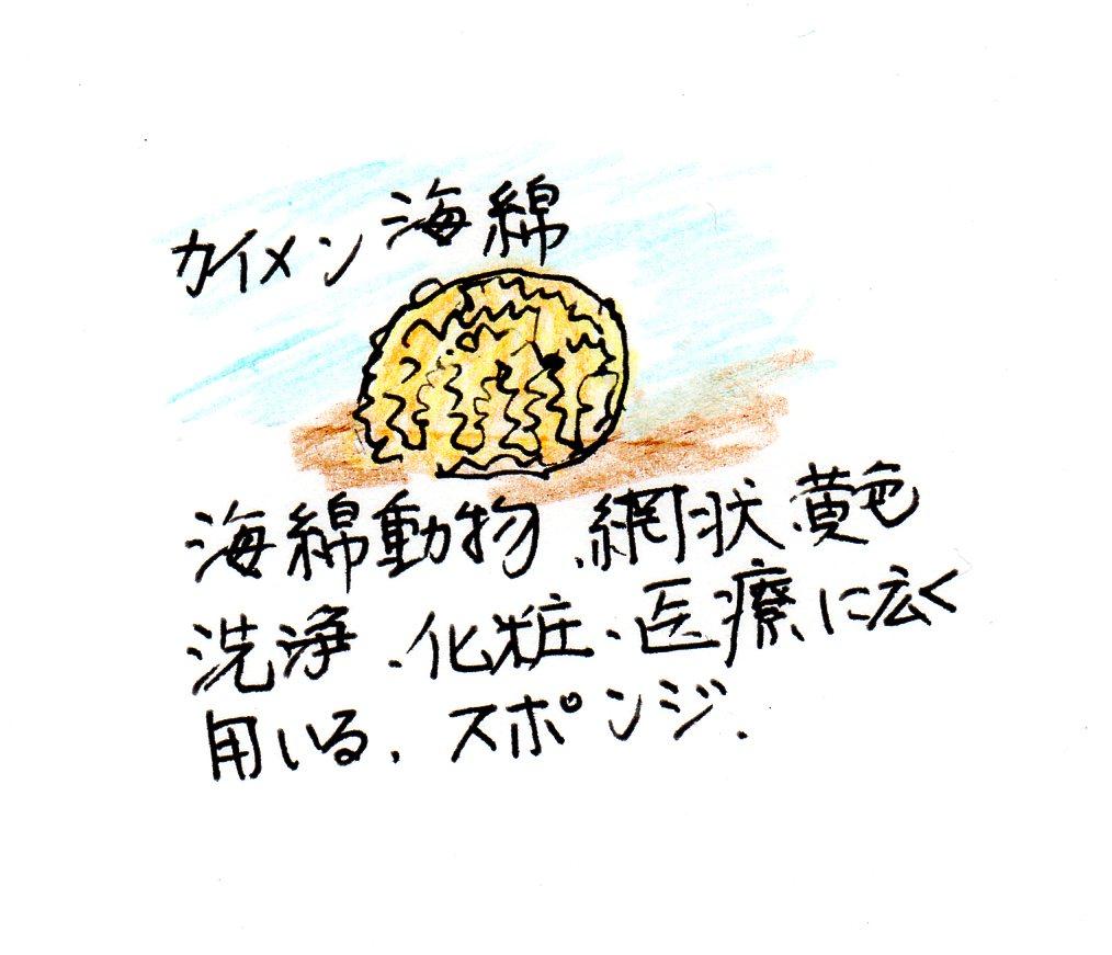f:id:chuumeikun:20170205194615j:plain