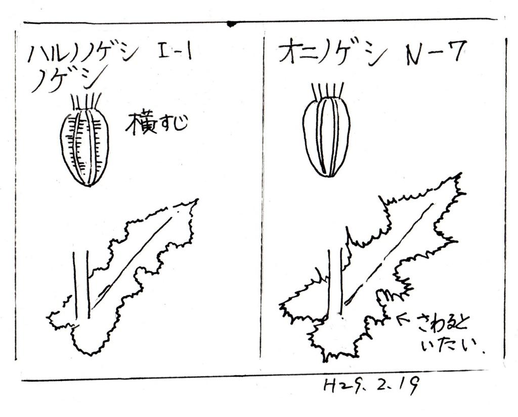 f:id:chuumeikun:20170223094730j:plain