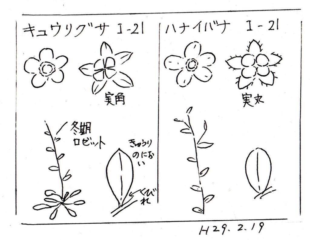 f:id:chuumeikun:20170223094816j:plain