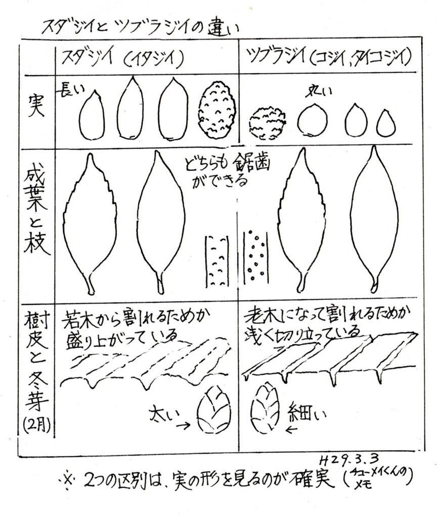 f:id:chuumeikun:20170302134632j:plain