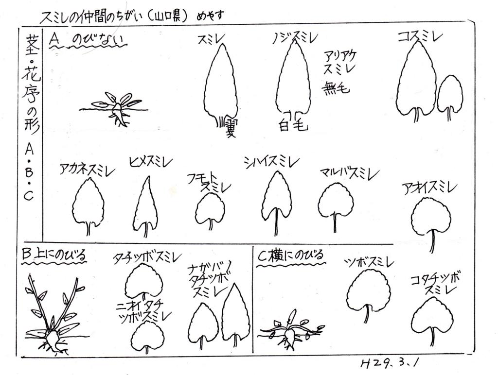 f:id:chuumeikun:20170308232748j:plain