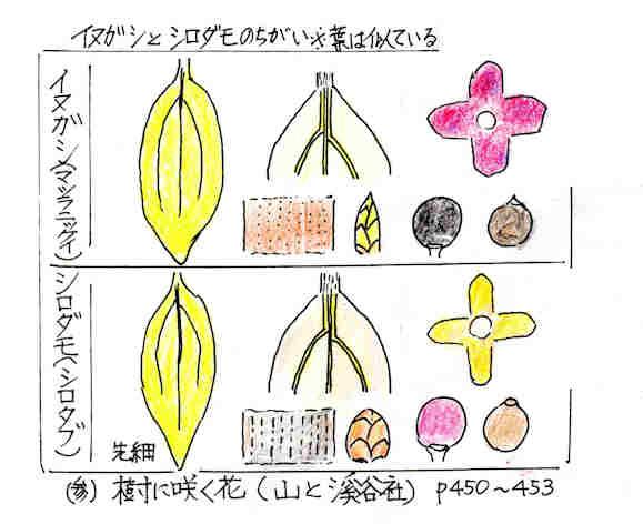 f:id:chuumeikun:20170313185934j:plain