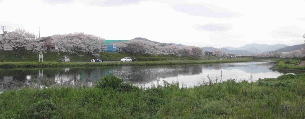 f:id:chuumeikun:20170410203956j:plain