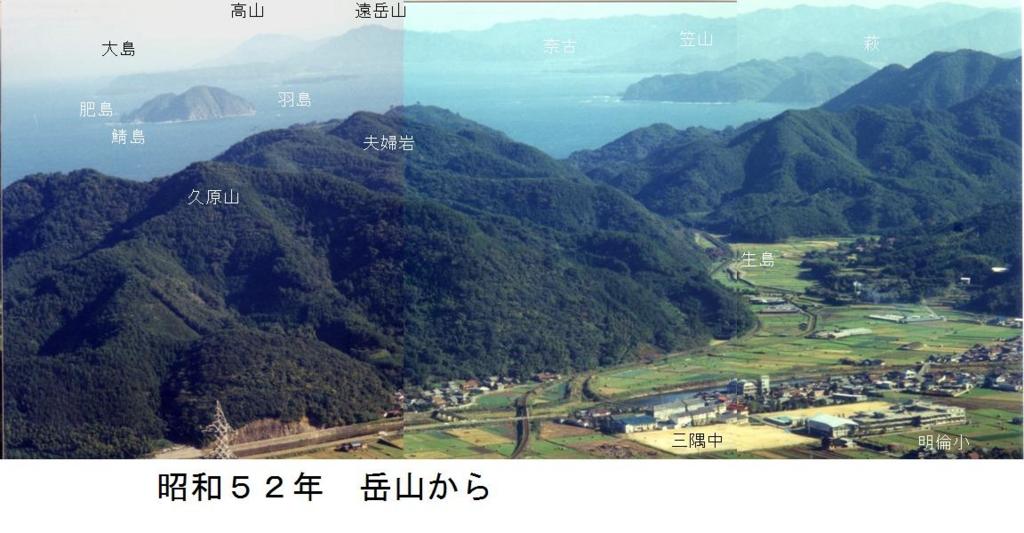 f:id:chuumeikun:20170414182615j:plain