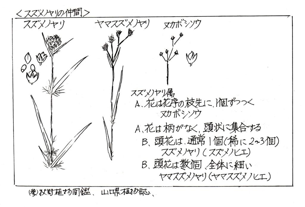 f:id:chuumeikun:20170416005445j:plain