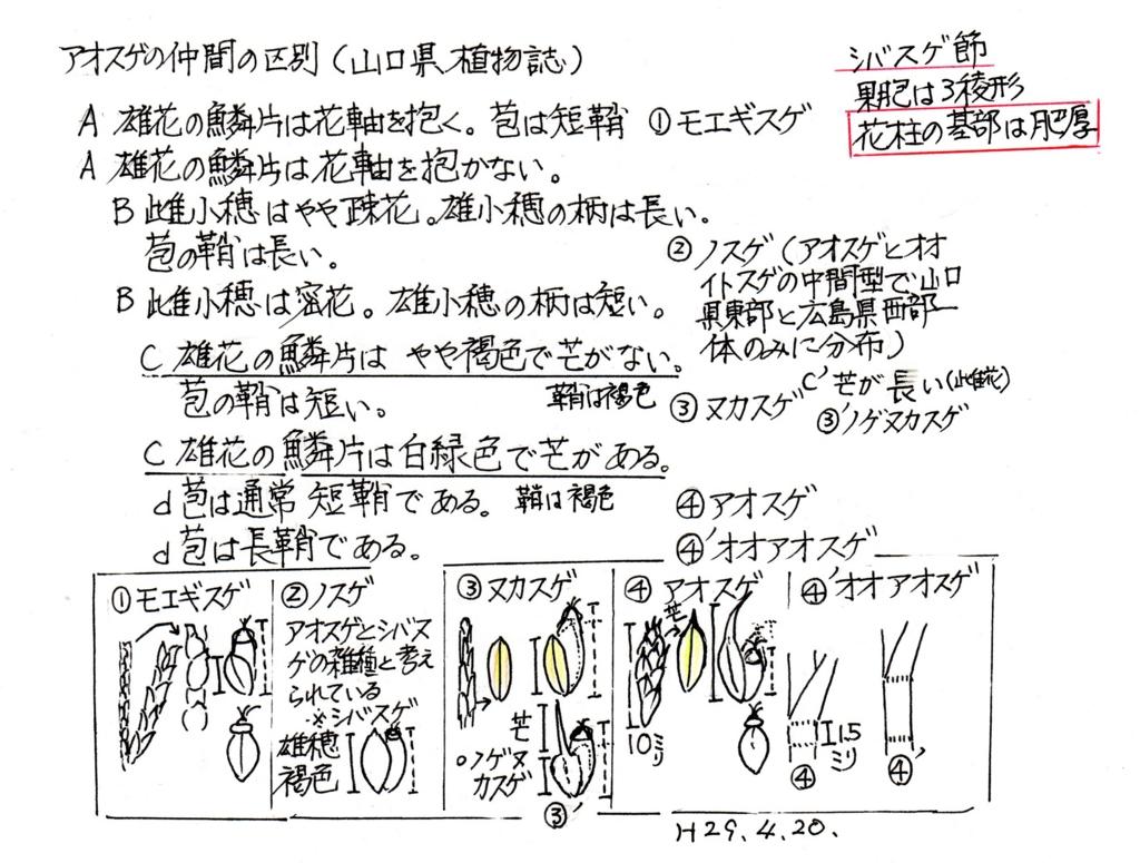 f:id:chuumeikun:20170430055104j:plain