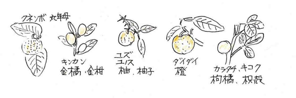 f:id:chuumeikun:20170501060111j:plain