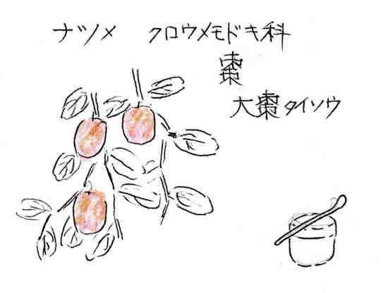 f:id:chuumeikun:20170501060233j:plain