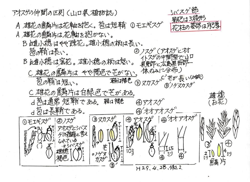 f:id:chuumeikun:20170502055930j:plain