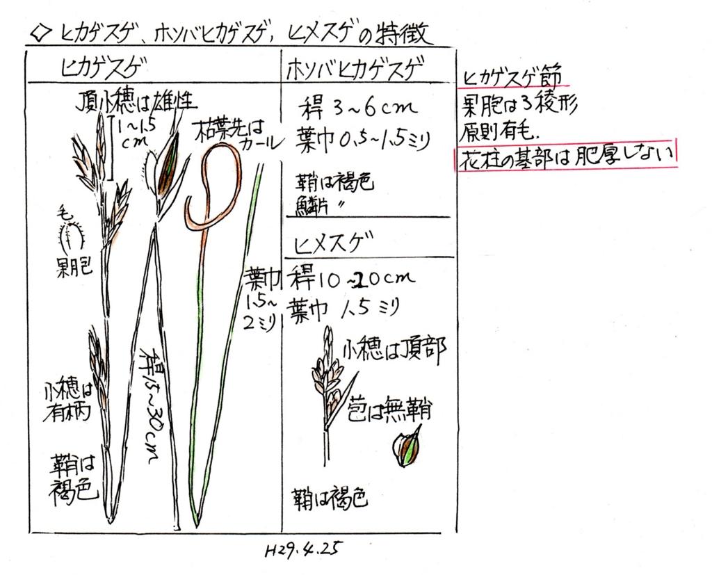 f:id:chuumeikun:20170503033435j:plain