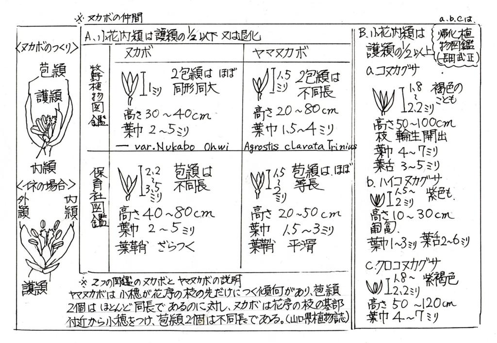 f:id:chuumeikun:20170504004133j:plain