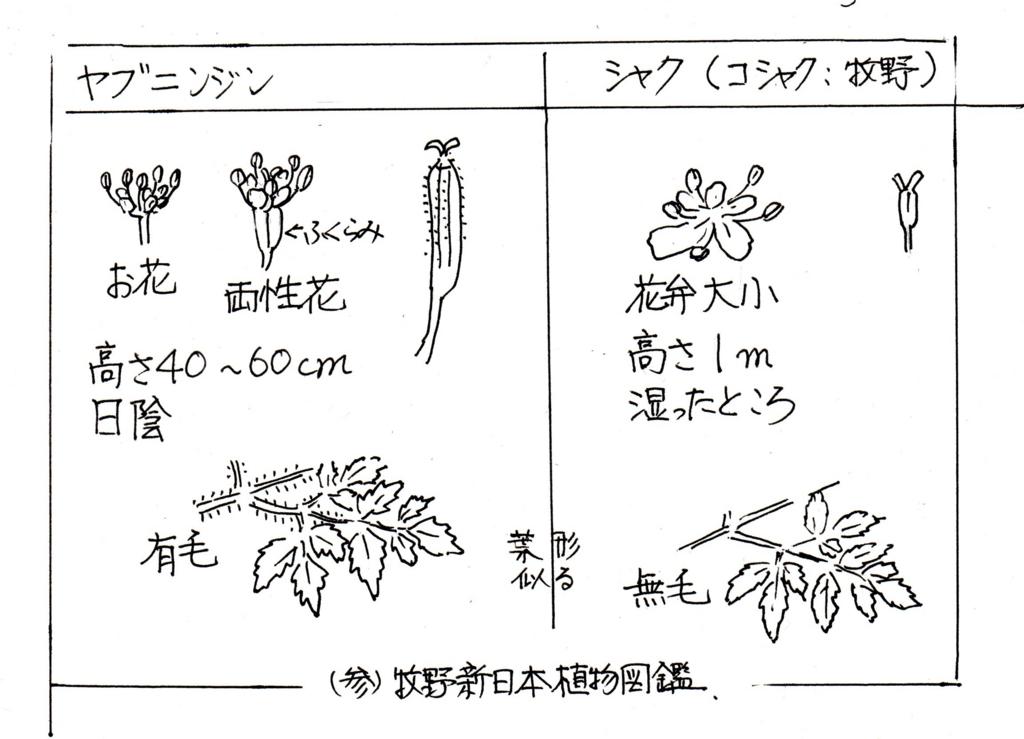 f:id:chuumeikun:20170505171853j:plain