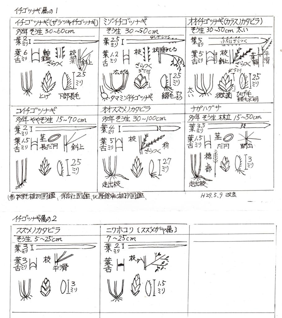 f:id:chuumeikun:20170510080459j:plain