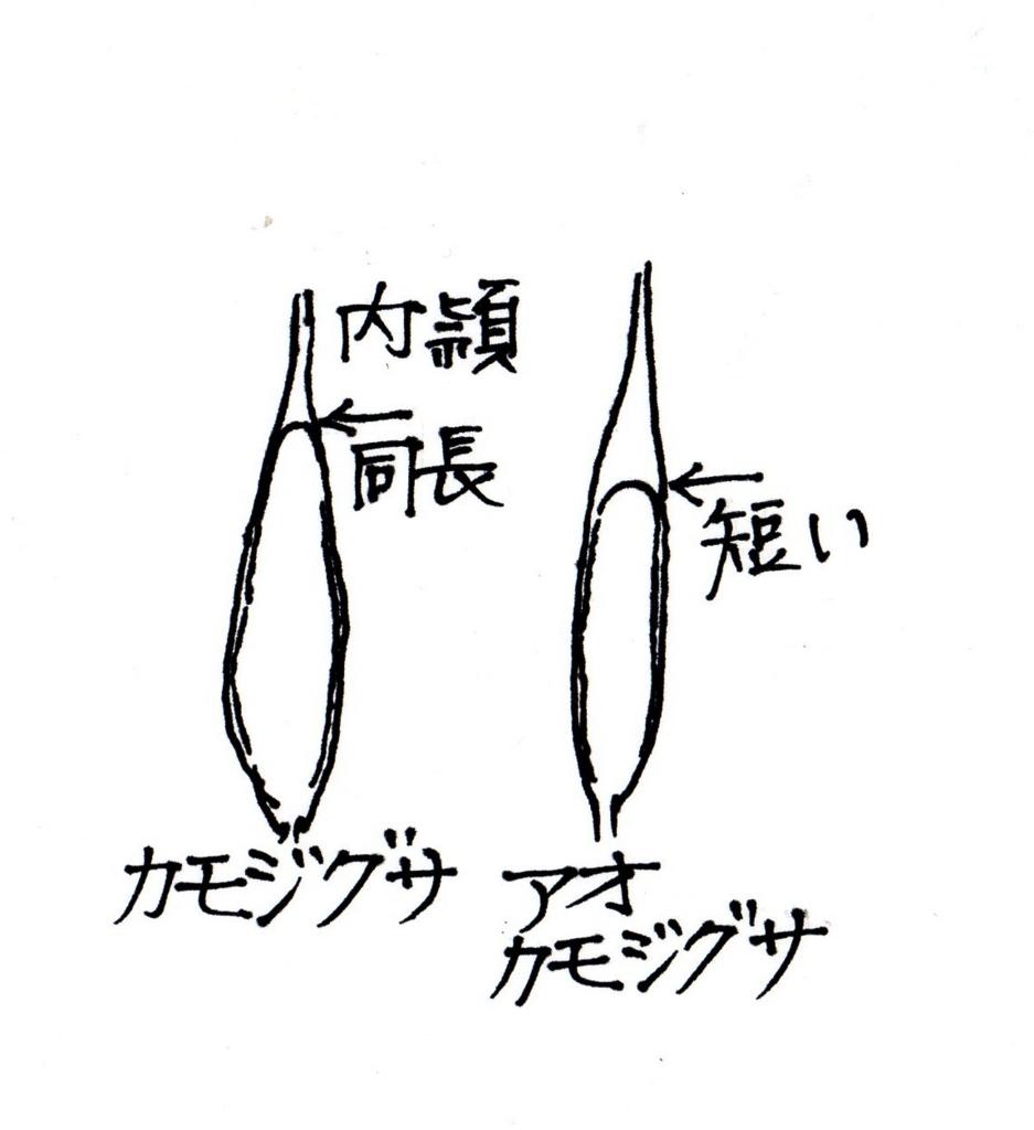 f:id:chuumeikun:20170516204420j:plain