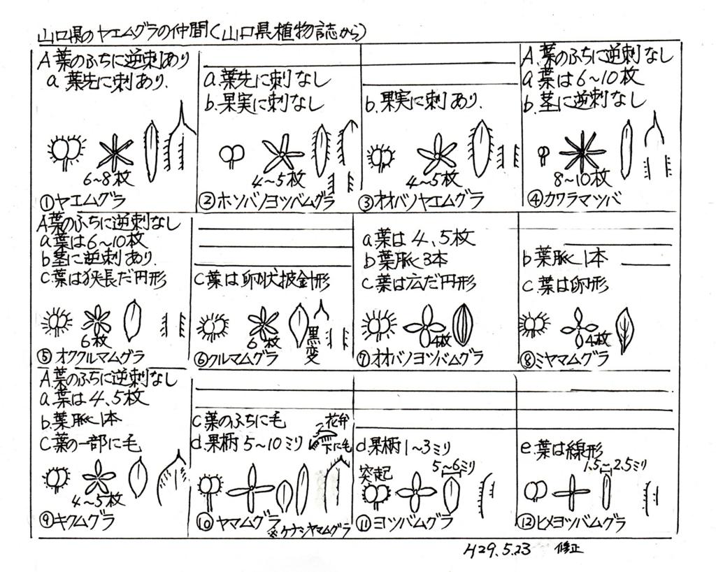 f:id:chuumeikun:20170526022952j:plain