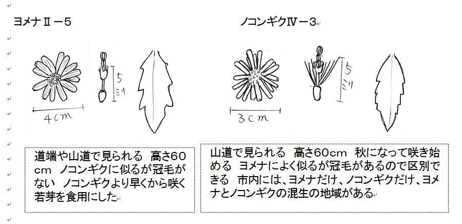 f:id:chuumeikun:20170614122139j:plain