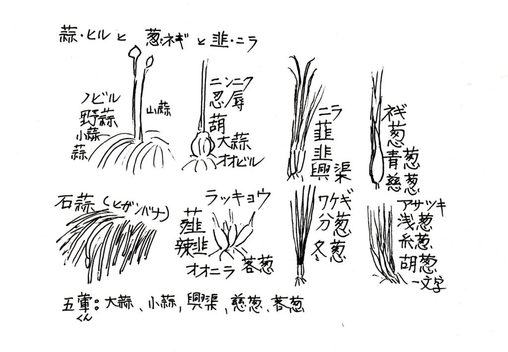 f:id:chuumeikun:20170621085215j:plain