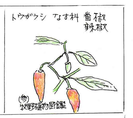 f:id:chuumeikun:20170627130837j:plain