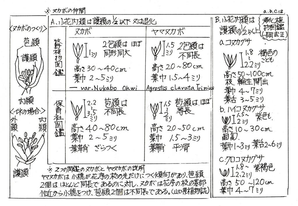 f:id:chuumeikun:20170722060305j:plain