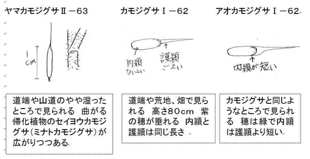 f:id:chuumeikun:20170727194228j:plain