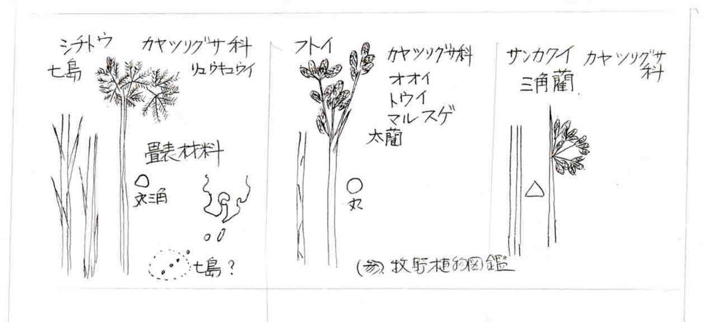 f:id:chuumeikun:20170731062649j:plain