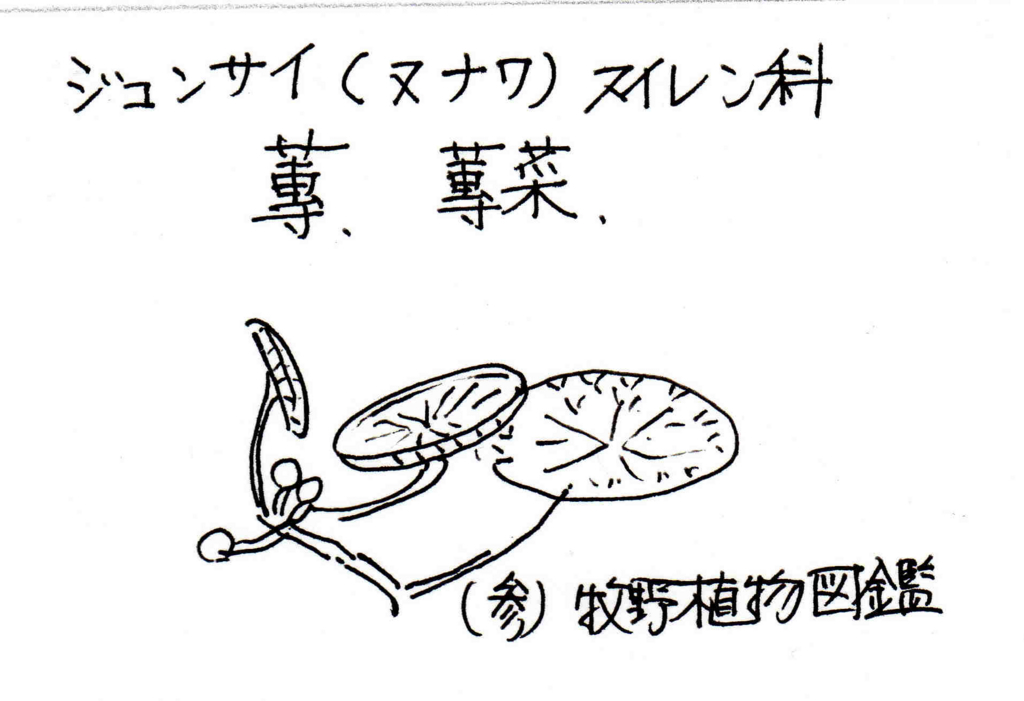 f:id:chuumeikun:20170807205913j:plain