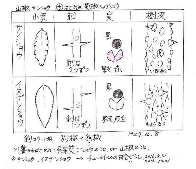 f:id:chuumeikun:20170809200142j:plain