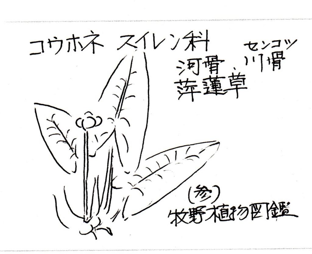 f:id:chuumeikun:20170820233254j:plain