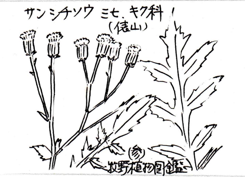 f:id:chuumeikun:20170820233511j:plain