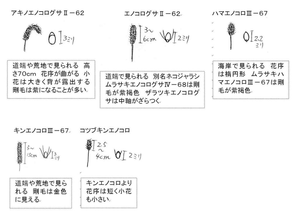 f:id:chuumeikun:20170901185915j:plain