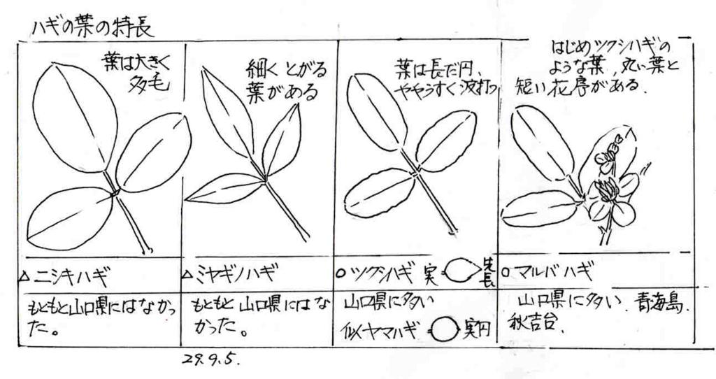f:id:chuumeikun:20170905233648j:plain