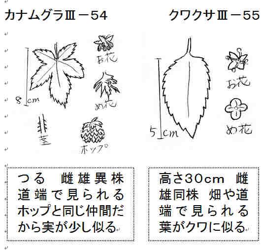 f:id:chuumeikun:20170906190800j:plain