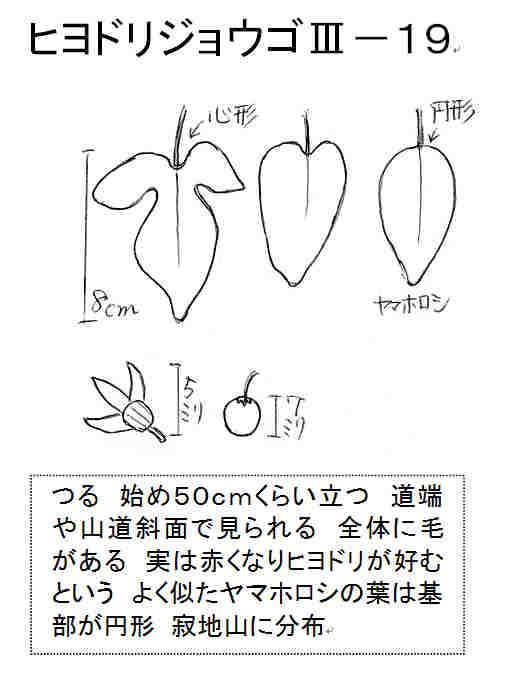 f:id:chuumeikun:20170906190906j:plain