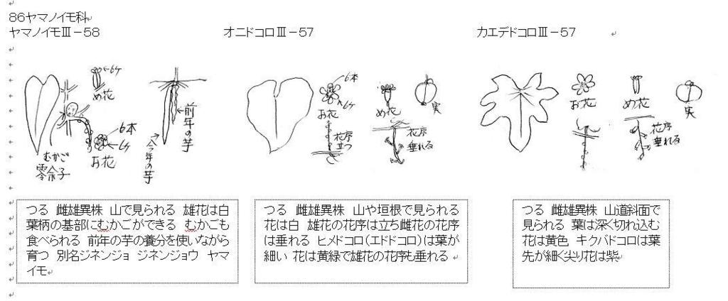 f:id:chuumeikun:20170906191035j:plain