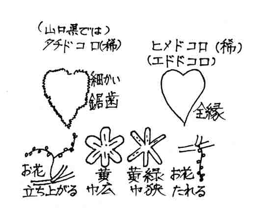 f:id:chuumeikun:20170906191052j:plain