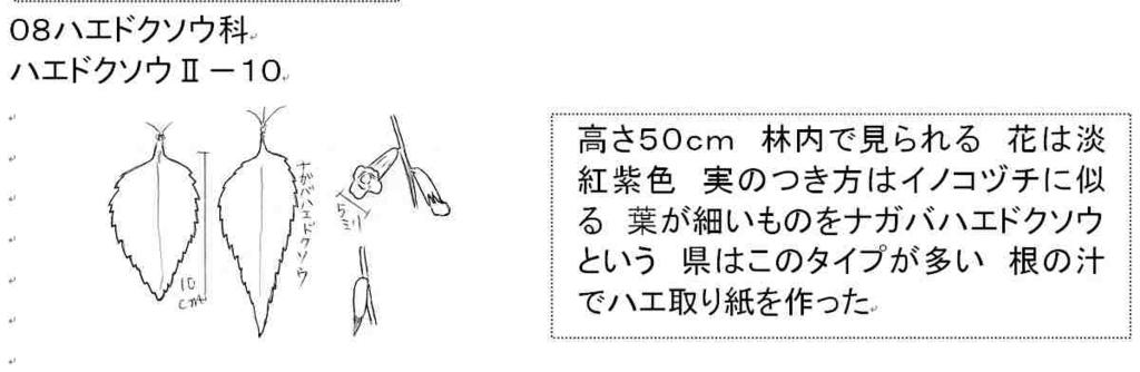 f:id:chuumeikun:20170907014657j:plain