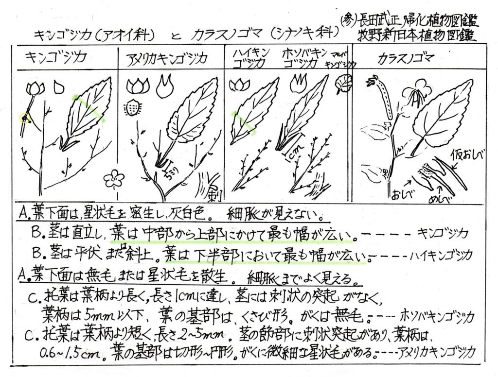 f:id:chuumeikun:20170909182742j:plain