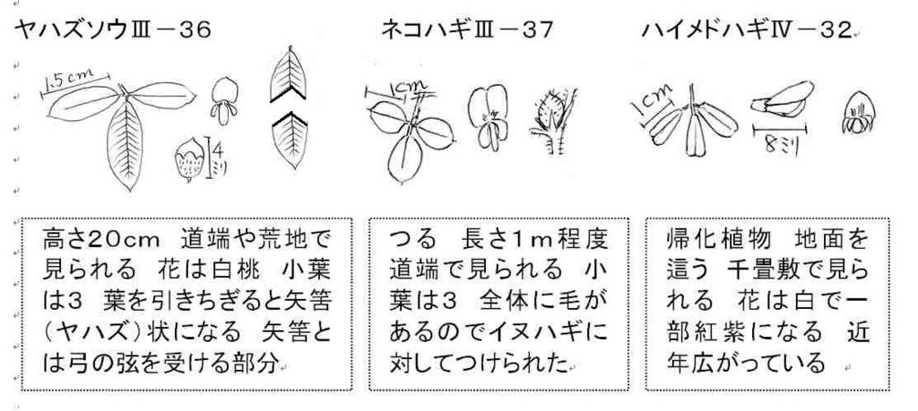 f:id:chuumeikun:20170911055711j:plain