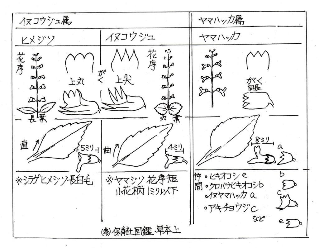 f:id:chuumeikun:20170920003419j:plain