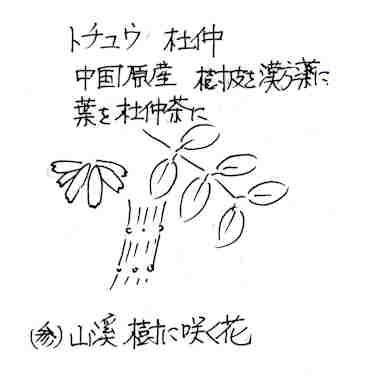 f:id:chuumeikun:20171002205930j:plain