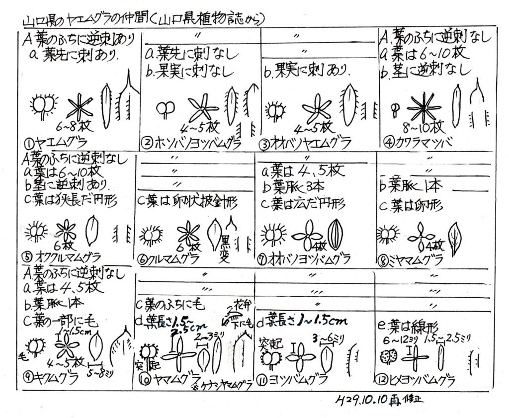 f:id:chuumeikun:20171013001724j:plain
