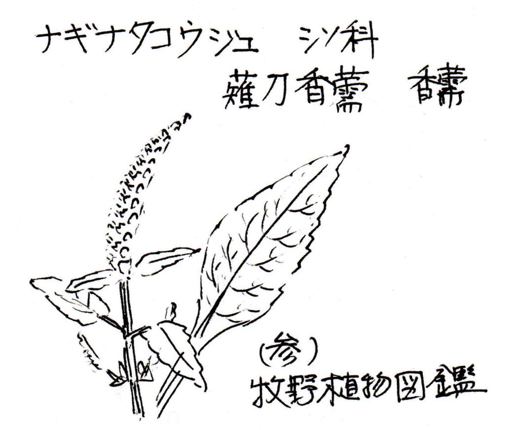 f:id:chuumeikun:20171023003937j:plain