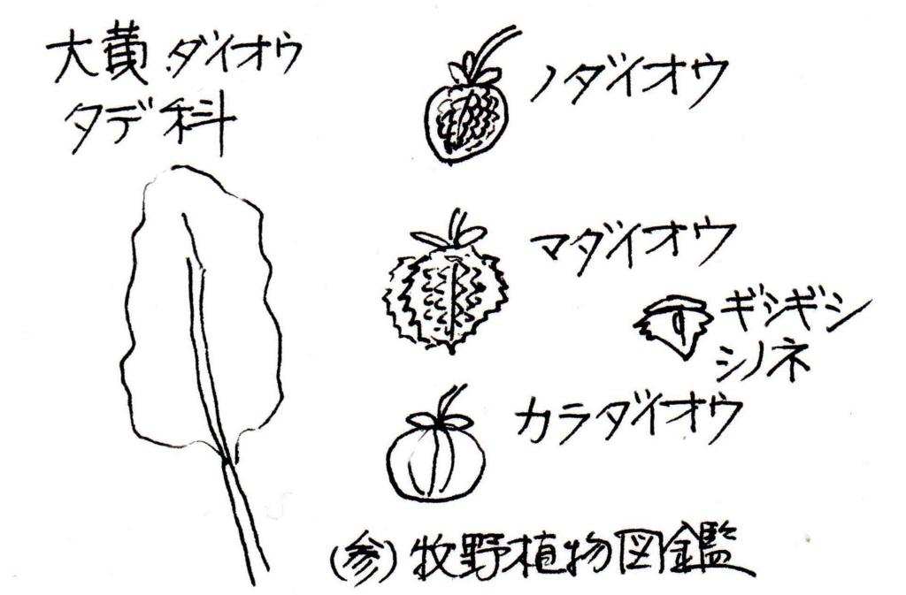 f:id:chuumeikun:20171031190246j:plain